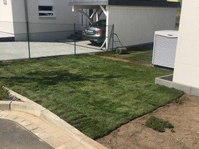 So sieht ein schöner Rasen aus …