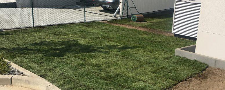 So sieht ein schöner Rasen aus … – Firma Bentzin